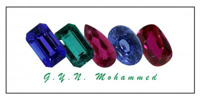 Logo_GYN_Mohammed